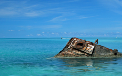 "Leadership challenges for Professional Services Firms – navigating the ""Bermuda Triangle"""